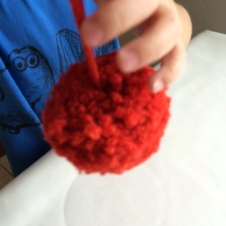 Finished pom-pom